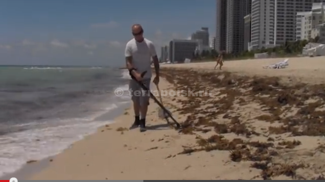 Серия Go-Find на мокром песке — противоречивые видео (о как!)