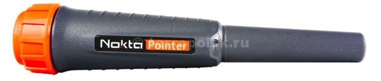 nokta-pointer-small.jpg
